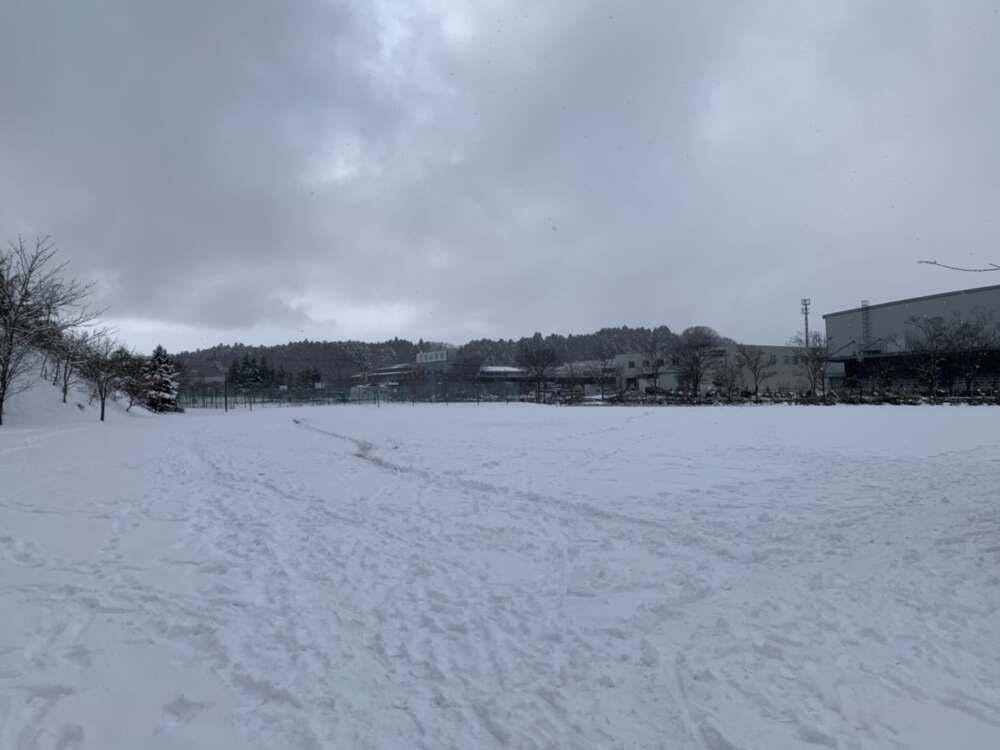 ソリ滑りも出来る成田地区2大公園をご紹介。寒い時期の運動不足、解消しましょう!